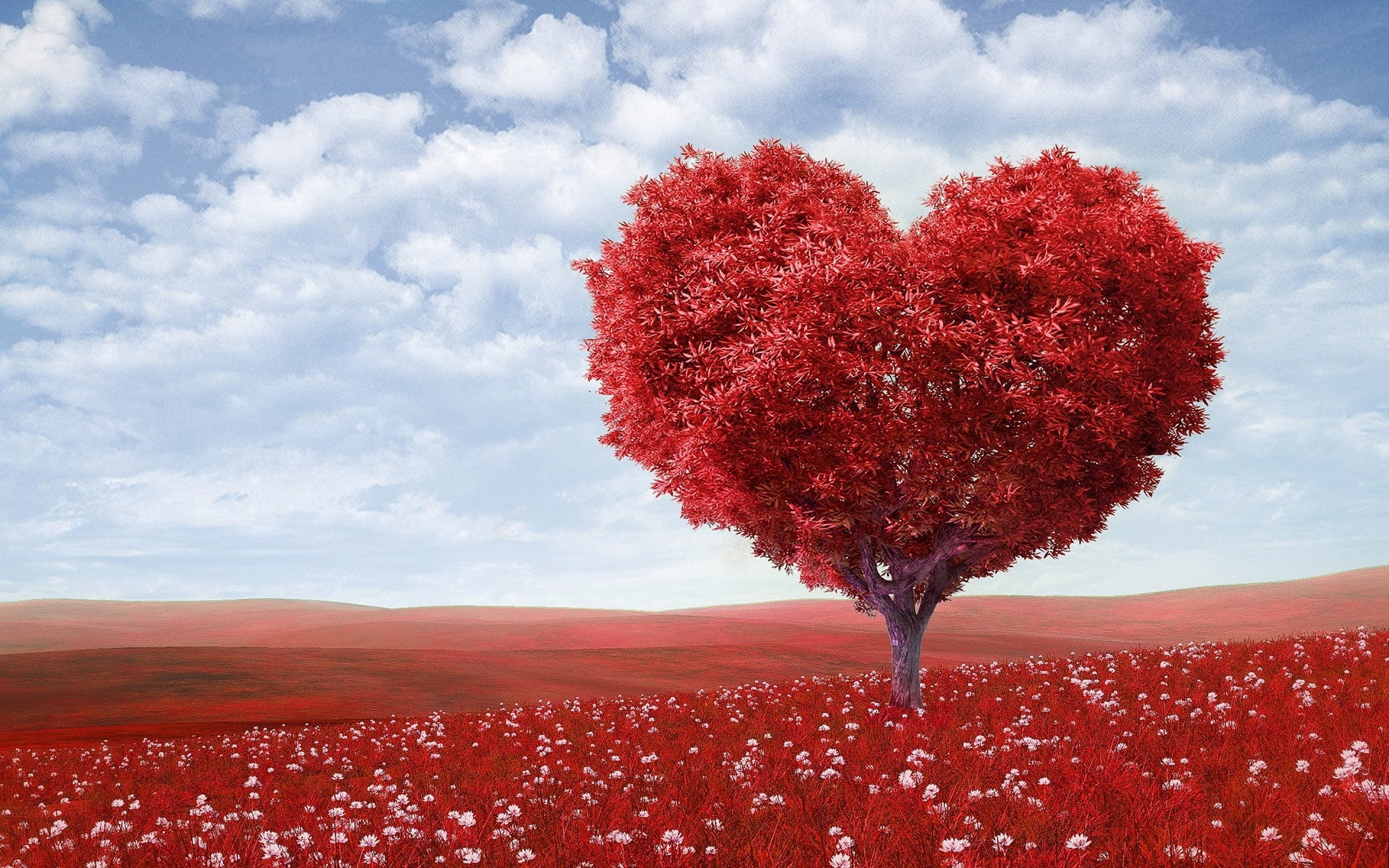 Lucky In Love - How To Find Your Soulmate | iwillfindyou.love: blog
